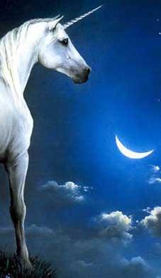 Лунный день сегодня: 19.07 - 5 лунный день - завершай начатые дела и планируй светлое будущее изоражения