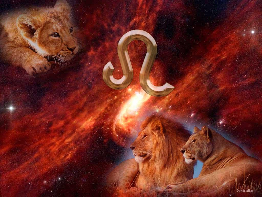 Сексуальна ли женщина львица
