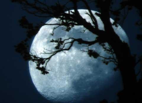 знакомства в 5 лунный день