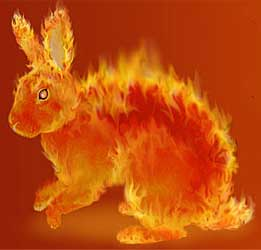 Огненный кролик китайский гороскоп
