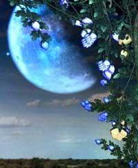 5-й Лунный день