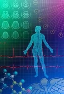 Биоритмы человека