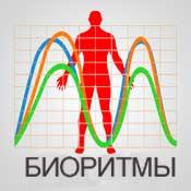Расчет биоритмов, биоритмы онлайн