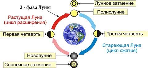 Вторая фаза или первая четверть Луны