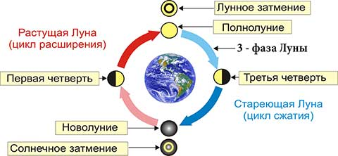 Третья фаза Луны