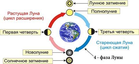 Четвертая фаза луны - последняя четверть