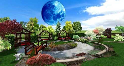 22 лунный день для огорода